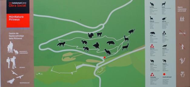 Ubicació de les espècies dins el centre de fauna MónNatura Pirineus