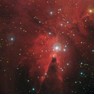La nebulosa del Con fotografiada des de l'observatori de MónNatura Pirineus (font: celdenit.com)