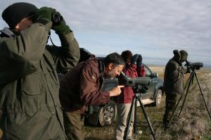 Observant les aus als Llanos de la Serena (Imatge: Miguel Ángel Martínez)