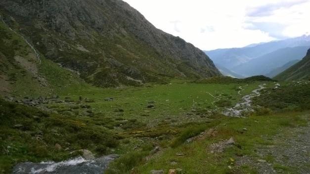 Foto 3. Planell de Sartari. Font pròpia.